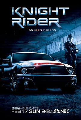 霹雳游侠2008电影版